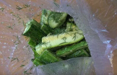 Как быстро засолить огурцы в пакете с чесноком и укропом