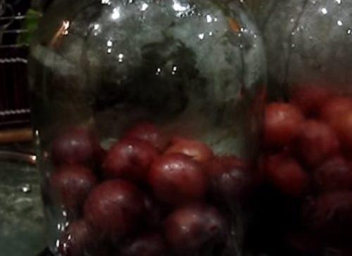 Компот из слив — простой рецепт на 3-х литровую банку