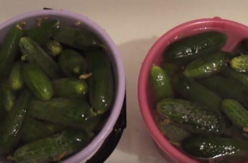 Как заготовить салат – огурцы по-корейски на зиму